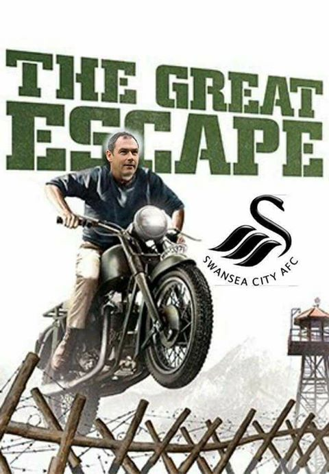 swans great escape